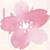 サクラ花.png